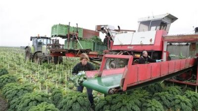 1 - landbouw