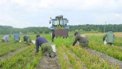 7 - landbouw