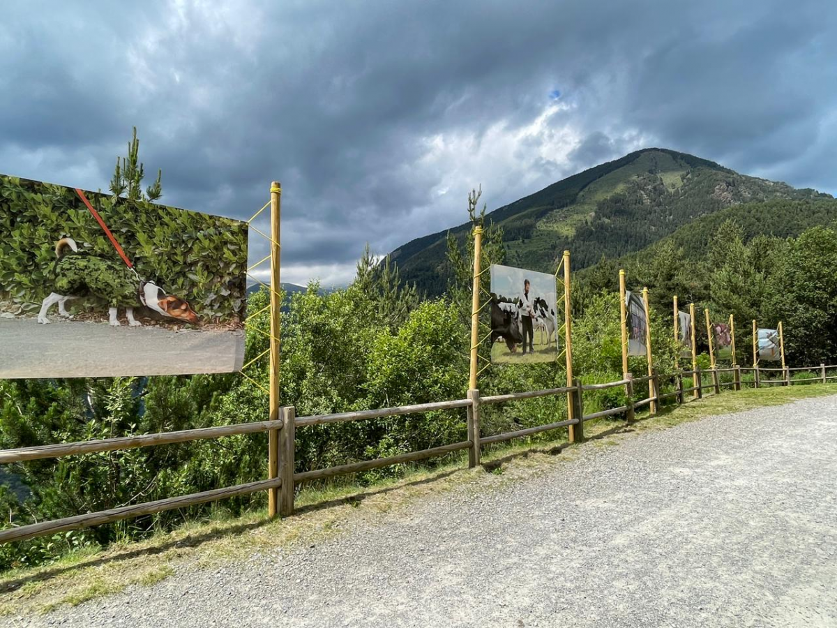solo exhibition from Joseph Ford in Andorra as part of the L'ANDART Land Art Biennial 2021