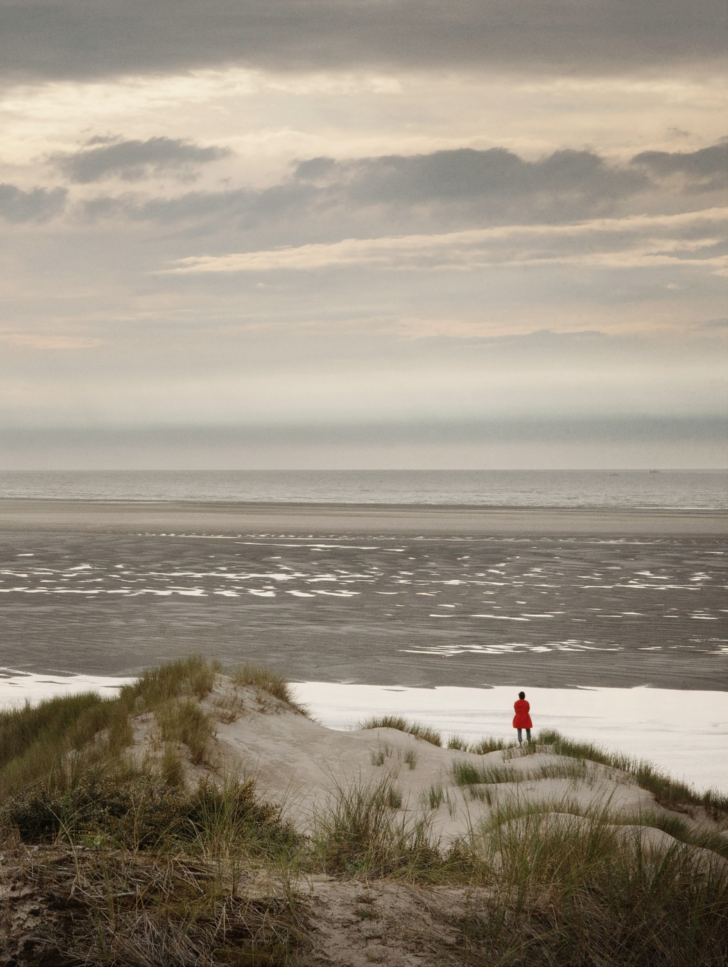 Ellenkooi berck-dune Ellen Kooi