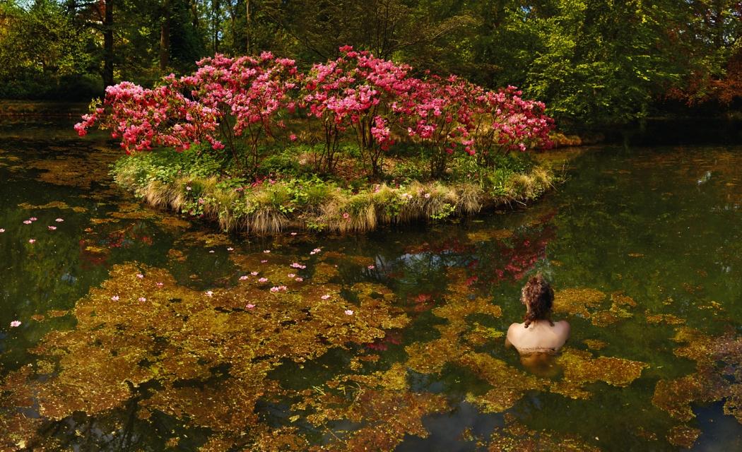 Ellenkooi bloemendaal-eiland srgb Ellen Kooi